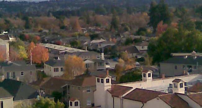 Ryan Towers Baywood Garden 42 Reviews San Mateo Ca