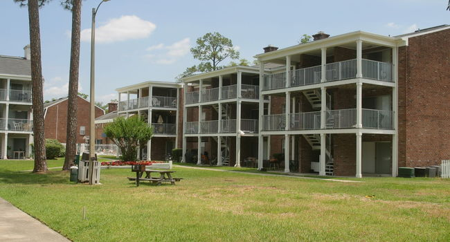 Image Of Mount Vernon Apartments In Gainesville, FL